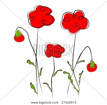 Flowers - red poppy