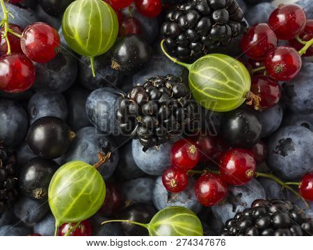 Mix Berries And Fruits. Ripe Blackberries, Blueberries, Blackcurrants, Red Currants And Gooseberries