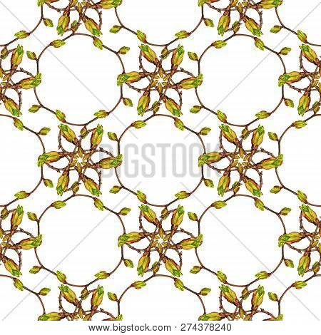Seamless Pattern With Watercolor Images Of Twigs And Buds On White Background. Good Design For Wallp