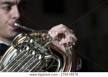 French Horn Player. Hornist Playing Brass Orchestra Music Instrument.