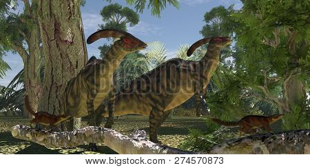 Parasaurolophus In The Forest 3d Illustration - Two Parasaurolophus Dinosaurs Browse On Foliage Of T