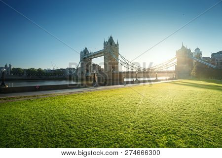grass and tower bridge in sunny morning London, UK