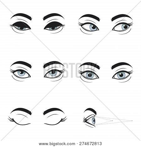 Set Collection Of Blue Female Eyes And Brows On White Background. Different Cartoon Eye Expressions.