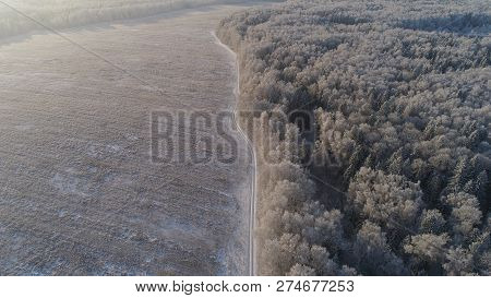 Aerial View Winter Landscape Snow Covered Field And Trees In Countryside. Country Road In Snowy Fiel