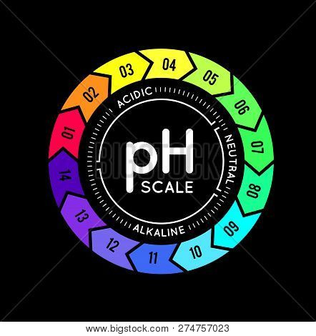 Ph Meter For Measuring Acid Alkaline Balance. Infographics In The Circle Form With Ph Scale