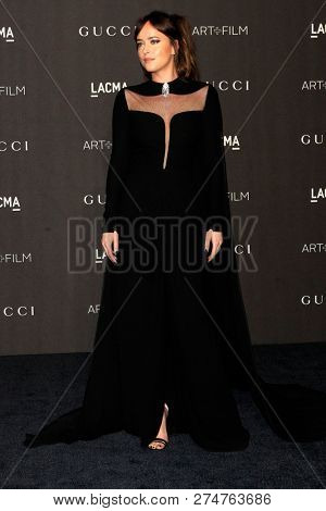 LOS ANGELES - NOV 3:  Dakota Johnso at the 2018 LACMA: Art and Film Gala at the Los Angeles County Musem of Art on November 3, 2018 in Los Angeles, CA