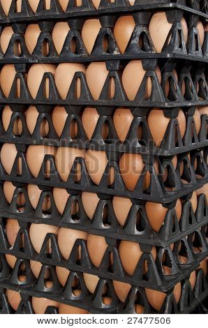 Eggs Rows Pattern Box Food Background