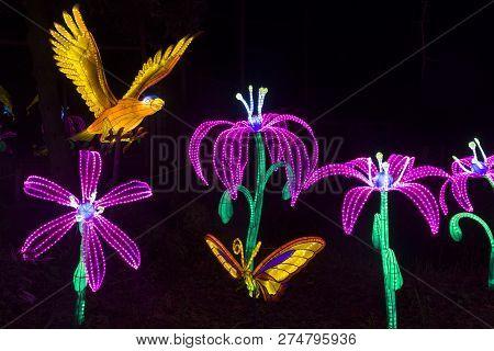Flower And Bird Lightobjects At China Light Festiva