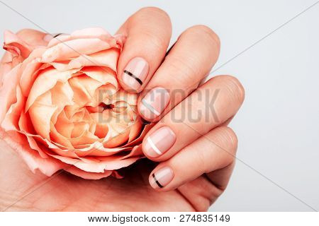 Hand With Trendy Manicure With Living Coral Rose