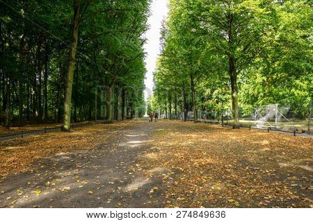 Healthy lifestyle concept. Tiergarten park with lush flora, falling leaves and walking people. Autumn nature in Berlin background.