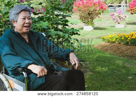 Elder Woman In Wheelchair Resting In Garden. Elderly Female Relaxing In Park. Senior Leisure Lifesty