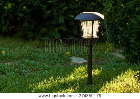 Sunlight And Solar Lights For Outdoor Pathway In A Garden