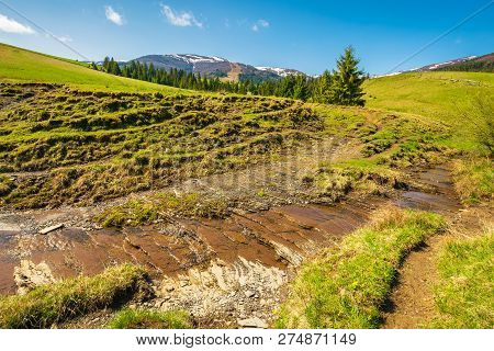 Small Brook In Mountains. Trees On The Hill Above The Stream. Mountain Ridge With Snowy Tops In The