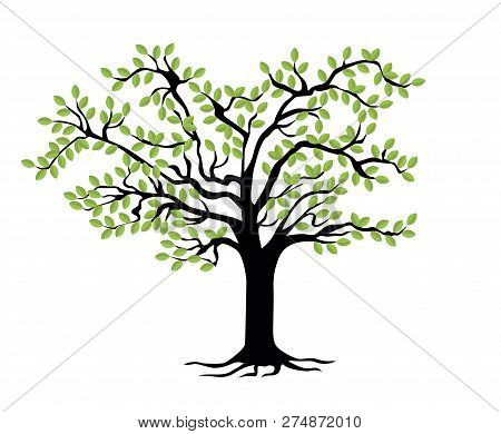 Family Tree Template. Vector Illustration. Genealogical Tree