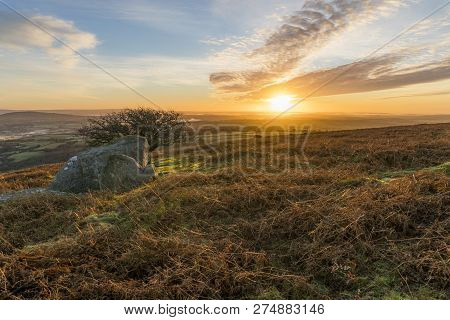 Sunrise On The Moors With Beautiful Golden Sky, Caradon Hill, Cornwall, Uk