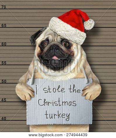 The Bad Dog In A Red Hat Stole The Christmas Turkey. He Arrested By The Police For This Crime And Se