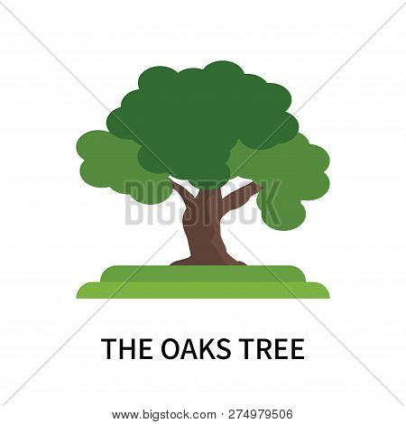 The Oaks Tree Icon Isolated On White Background. The Oaks Tree Icon Simple Sign. The Oaks Tree Icon