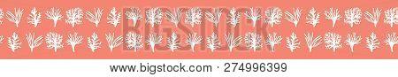 Vector Living Coral Marine Specimen Seamless Border