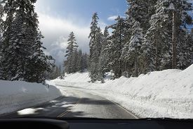 Winter Road. Snowy Forest. View From Car Window.