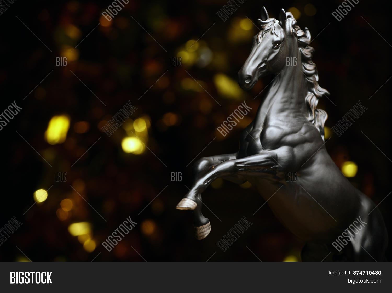 Image Black Horse Dark Image Photo Free Trial Bigstock