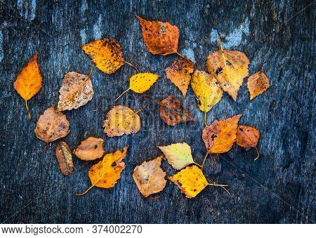 Autumnal Leaves On The Abstract Grunge Wooden Background