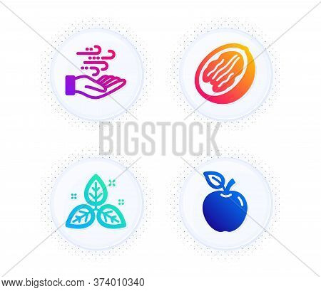 Pecan Nut, Wind Energy And Fair Trade Icons Simple Set. Button With Halftone Dots. Apple Sign. Veget