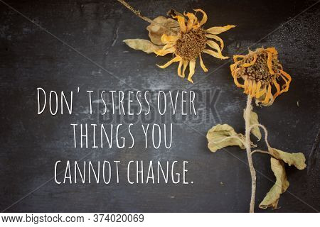 Inspirational Quote - Do Not Stress Over Things You Cannot Change. Motivational Words Concept With