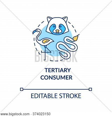 Tertiary Consumer Concept Icon. Grazing Food Chain Link. Small Carnivores And Birds. Natural Ecosyst