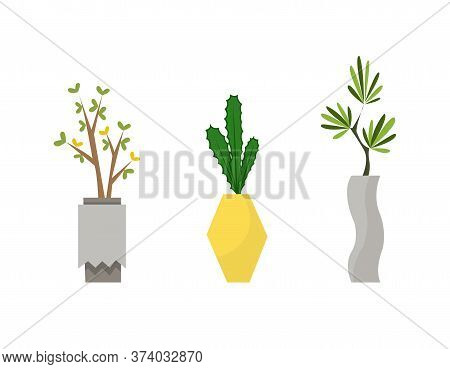 Collection Of Indoor House Plants In Pots. Home Decorative And Deciduous Plants In A Flat Style. Set