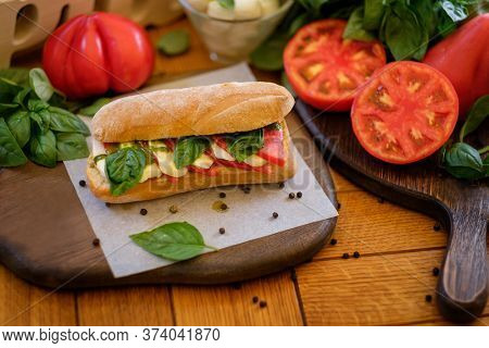 Tasty italian caprese on ciabatta sandwich with ingridients lying around - tomato, bazil and mazzarella. Concept of traditional italian kitchen recipe