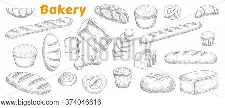Bakery, Pastry And Bread Isolated Vector Sketch Icons. Engraved Bake Shop Rye And Wheat Bread Sorts,