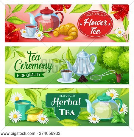 Tea Beverage Vector Banners Of Green, Herbal And Black Hot Drinks. Tea Cups And Mug, Teapots And Ket