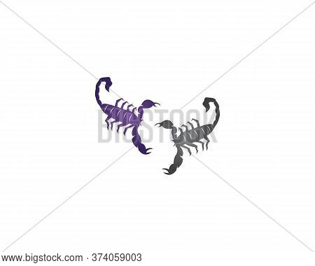 Scorpion Icon And Symbol Vector Illustration
