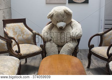 Teddy Bear Sitting On A Antique Chair.