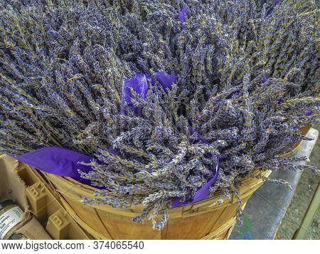 Fresh Lavender In A Bucket At A Farmers Market In San Francisco