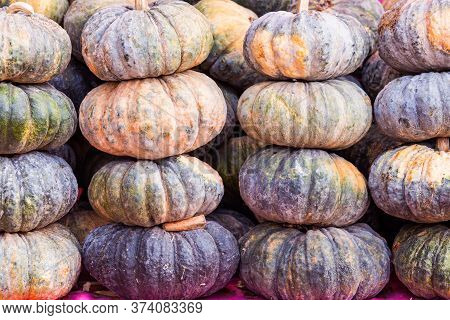 Stack Of Pumpkin In The Market On Natural Light.