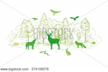 Sketch Vector Landscape With Forest And Animals. Flat Animals Silhouettes In Green Colors. Wolf, Dee