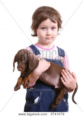 Little Girl With Dachshund Puppy