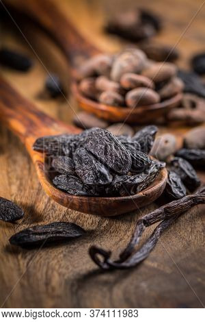 Fragrant tonka and cocoa beans with vanilla beans for baking and cooking on dark background