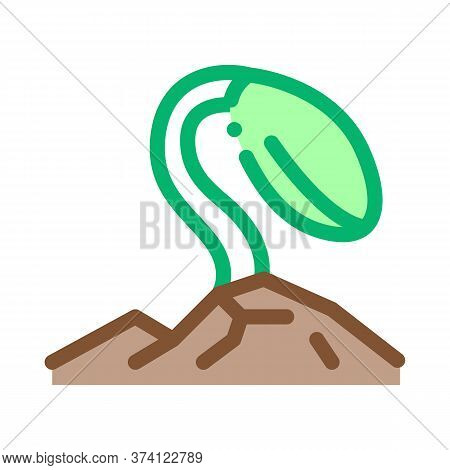 Soy Growth Icon Vector. Soy Growth Sign. Color Symbol Illustration