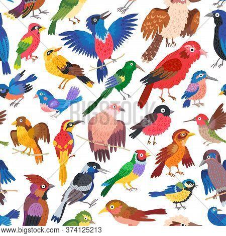Seamless Forest Bird Pattern Background For Kids