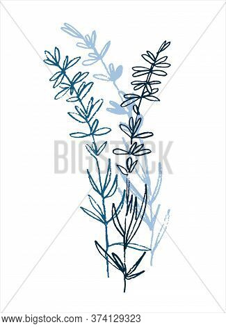 Lavender Flowering Plant. Mini Art Print. Hand Drawn Monochromatic Vector Illustration