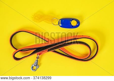 Top View Of Black Orange Collar Or Leash, Blue Clicker For A Dog On A Yellow Background. Necessary F