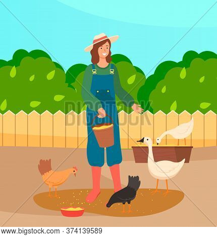 Woman Is Feeding Chickens And Goose On Farm. Female Farmer Worker Is Giving Food To Domestic Fowl. S