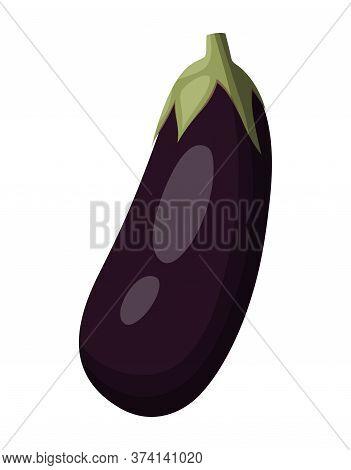 Eggplant Isolated On White Background, Aubergine, Vector Illustration, Vegetarian Food