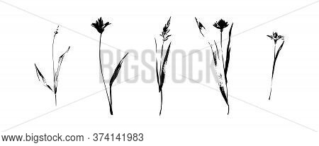 Hand Drawn Grunge Black Flowers Set. Dirty Decorative Vector Floral Collection, Isolated On White Ba