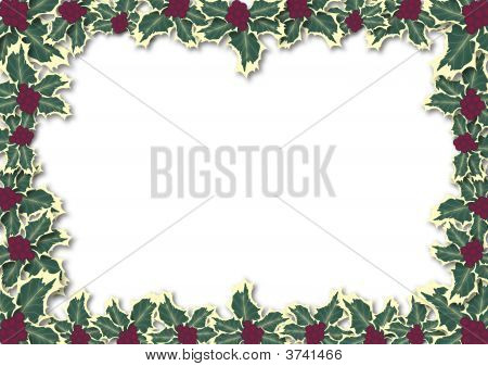 Holly Leaves Border