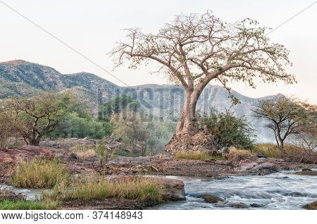 A Baobab Tree After Sunset On An Island In The Kunene River At The Top Of The Epupa Waterfalls