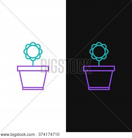 Line Flower In Pot Icon Isolated On White And Black Background. Plant Growing In A Pot. Potted Plant