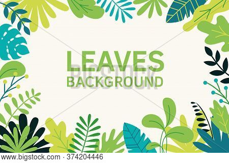 Bushes, Plants And Herbs Background In Madern Flat Style. Frame Template For Cards, Posters, Banners